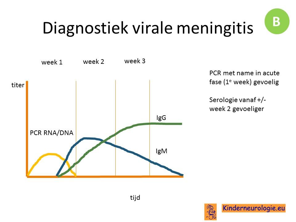 virale infectie uitslag